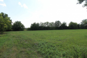 Land for sale in Kameničná